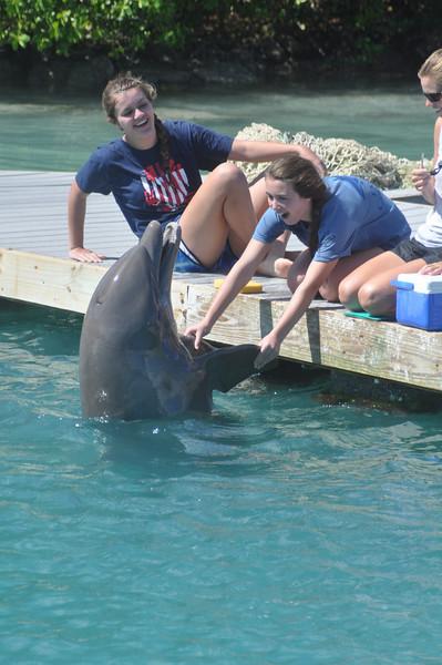 Hawk's Cay March 2012