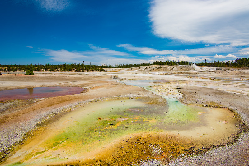 Yellowstone Day 3-5905.jpg