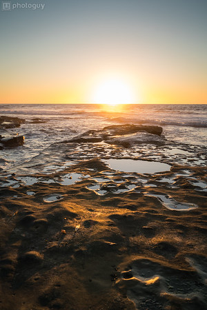 20180111_TIDE_POOLS_LA_JOLLA (5 of 16)