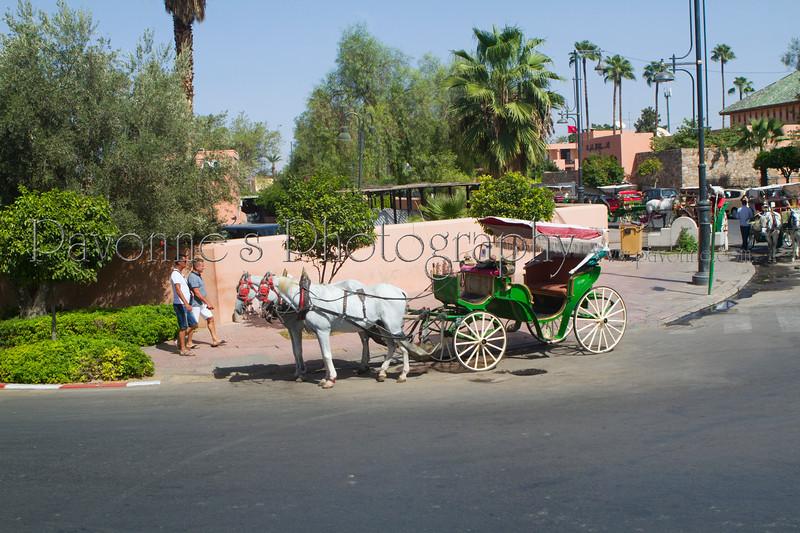 Morocco 1b 0246.jpg