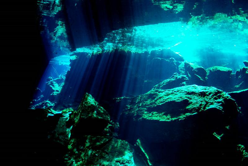 2014 Whale Shark - Cave Adventure-118.jpg