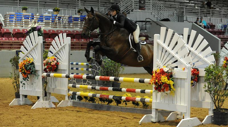Horse show (88).jpg