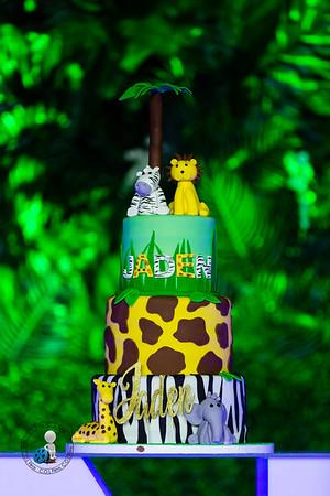 Jaden 1st Birthday