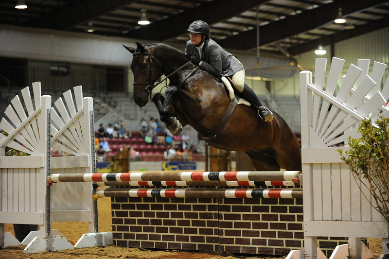 Horse show (35).jpg