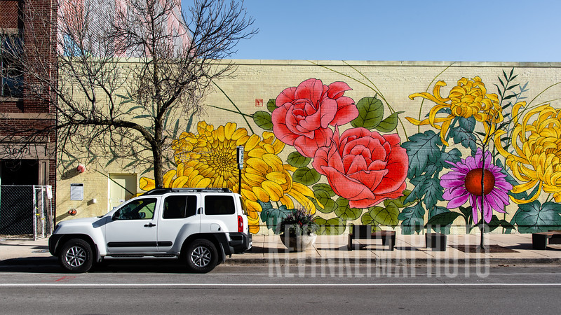 Floral Mural on the CVS on Southport