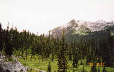 1999 - Olympic National Park / Seattle