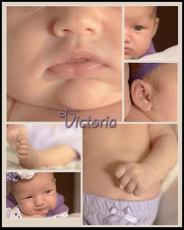 Baby Victoria