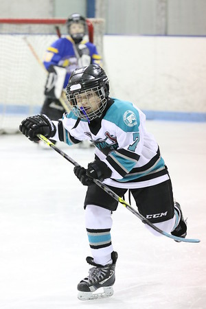 Game 1 - Plymouth Sharks Vs Dearborn Bandits