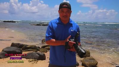 Welcome to Kauai 2020-2021