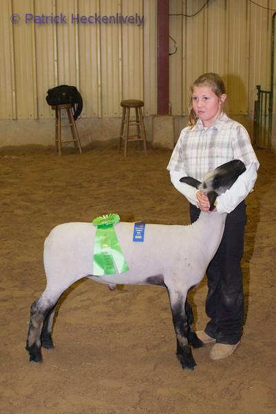 2010-09-27 Sheep 1400-1500