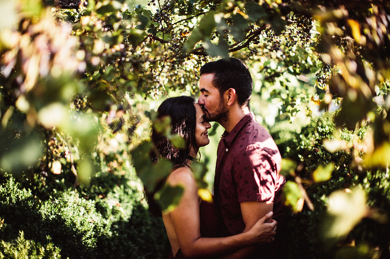 Evelyn + Jose