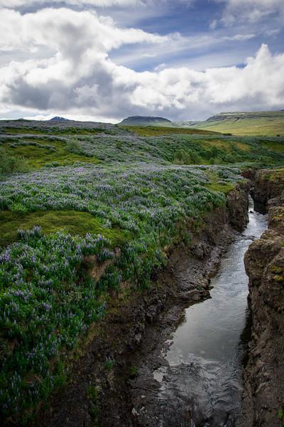 West-Iceland-134.jpg