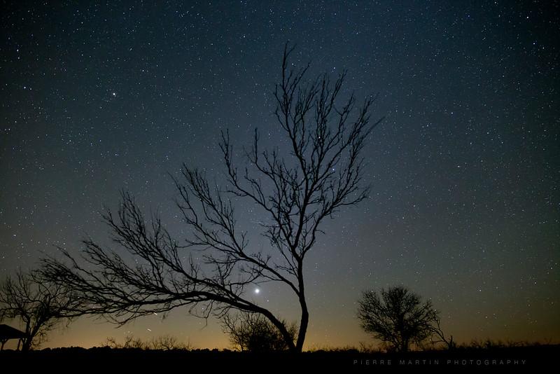 37-photo-nuit3.jpg