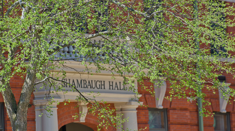 shambaugh_blossoms_3790.jpg