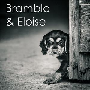 Bramble & Eloise