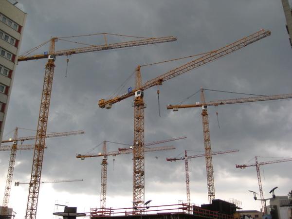 cranes_2.jpg
