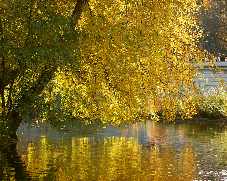 Fall Foliage: St. James's Park