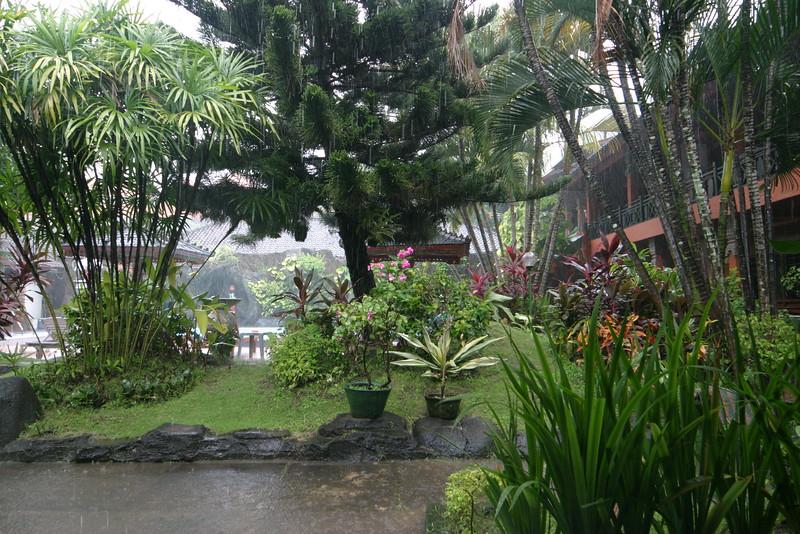 IN607-tropical rain.JPG
