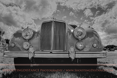 The nose of a 1953 English motor car, the Armstrong-Siddeley, captured at the 2011 Marin concours d'Elegance.