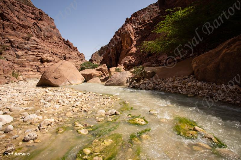 Jordan Wadi al-Hasa -ממלכת ירדן ואדי זרד
