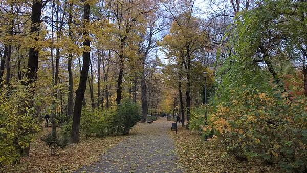Parcul Delavrancea