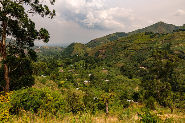 * Uganda 2021 - Gorilla, Chimpanzee and Wildlife Trekking