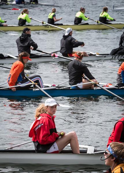 Windemere Cup, Montlake Cut - 5-2014