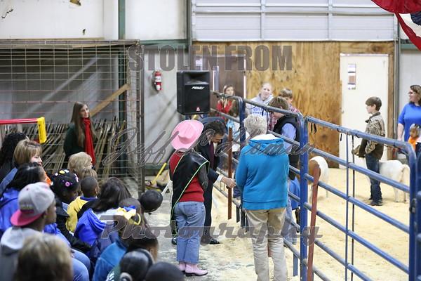 2015 Clark County Livestock Show