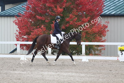 2015 Thoroughbred Makeover