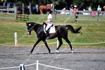 091011 USEA Horse Trial