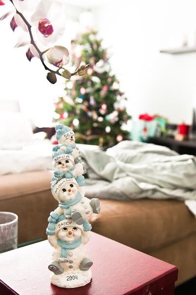 Christmas 2012-0091.jpg