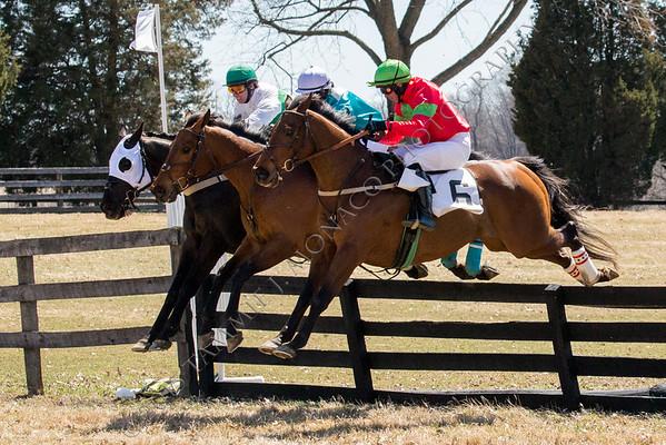 Elkridge-Harford Hunt Races 040415