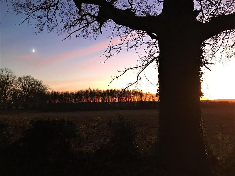 Sunset-37