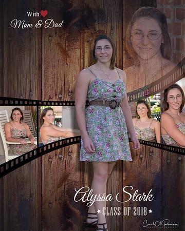Alyssa Stark 2018
