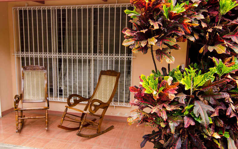 casaluciachairs&foliage.jpg