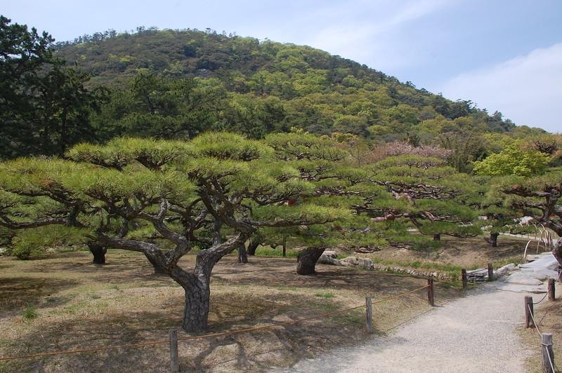 11-Japan2011_0422.JPG