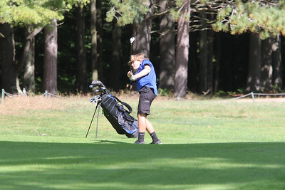 Boys Golf at Williston (NVAC)