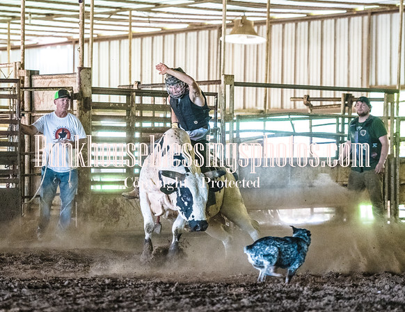 TERRY DON WEST BULL RIDING SCHOOL