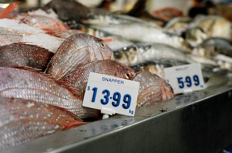fish-at-market_1815449542_o.jpg
