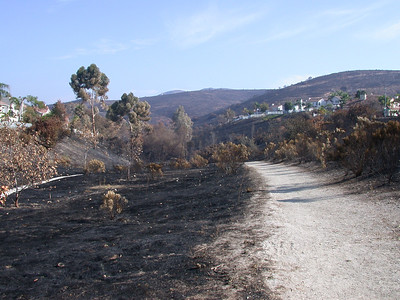Fire Zone Las Brisas 2003