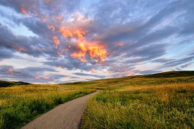 Nose Hill - Calgary