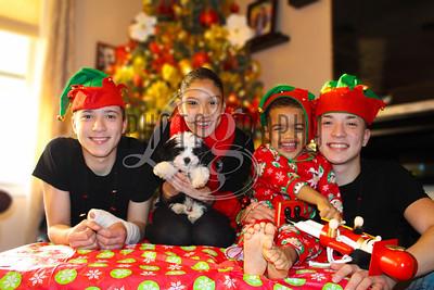 Ana & Mark Family Holiday
