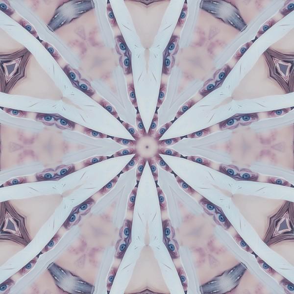image%3A31346_mirror2.jpg