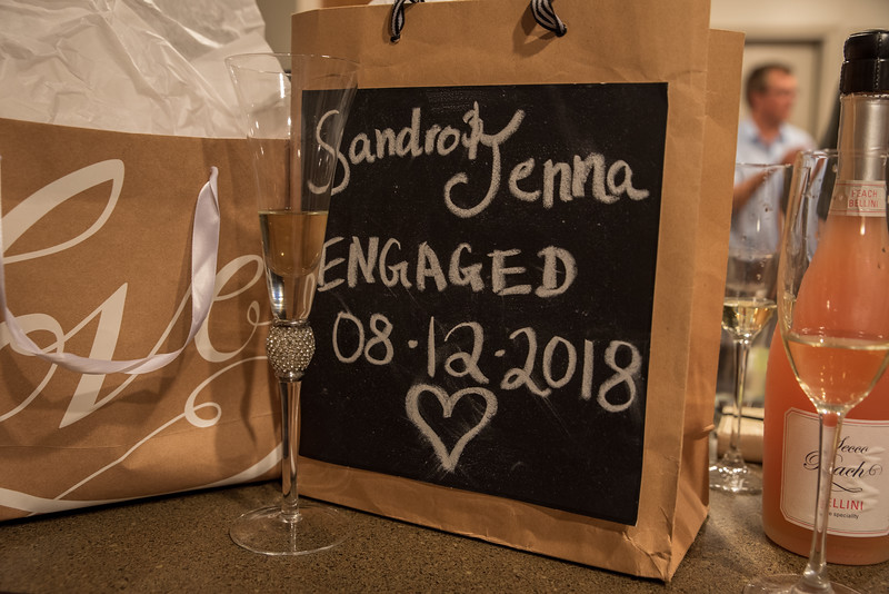20180812_Jenna_Sandro_Proposal_082.jpg