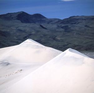 Death Valley Safari