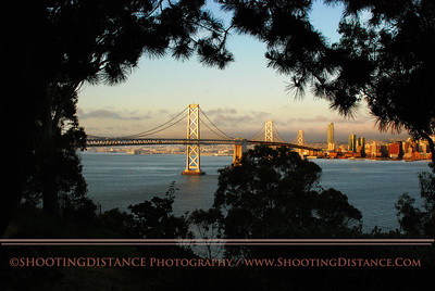 Bay Bridge and the City, morning