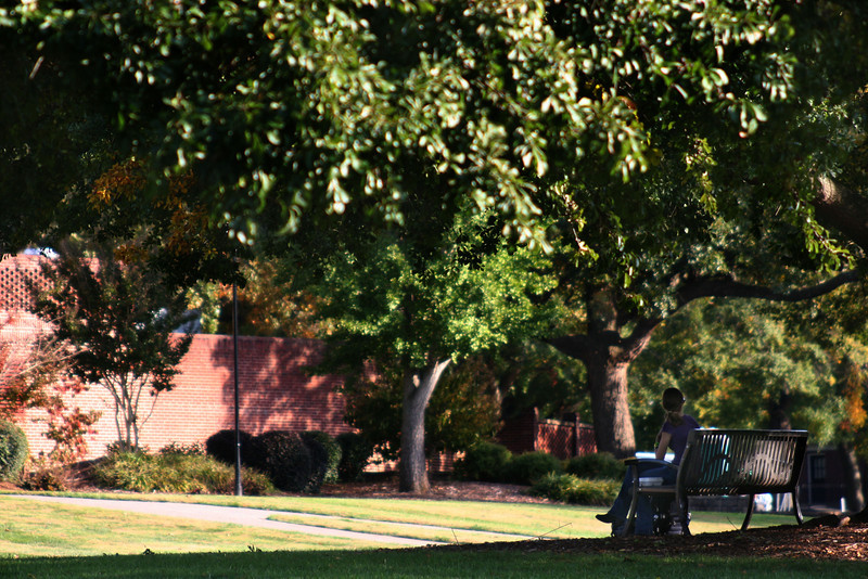 A Gardner-Webb University student sits on a bench in the Quad on a Fall day.