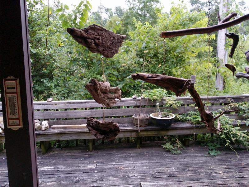 Vertical driftwood
