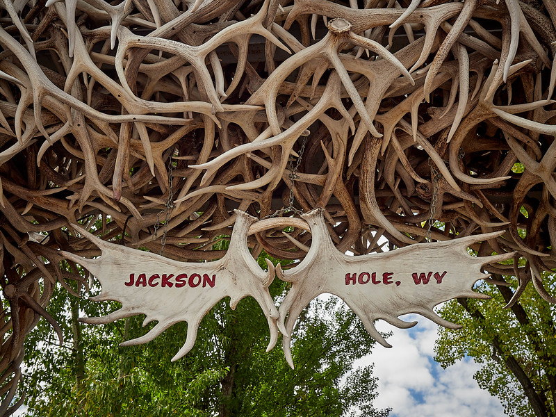 These are real stag antlers that are collected by the local Scout group