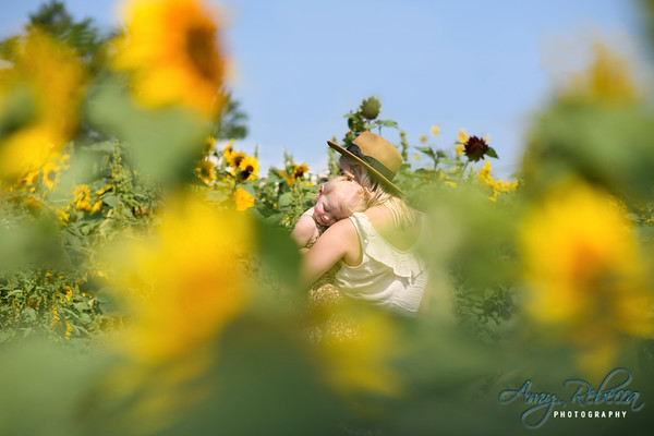 07-26-Kayla + Finley_Sunflowers